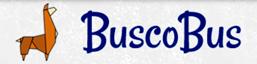 BuscoBus